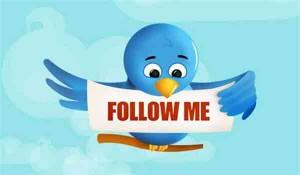 Кнопка Follow me на сайт