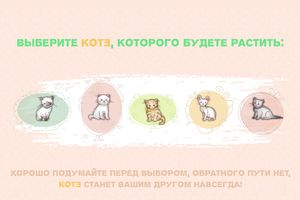 Игра КотЭ ВКонтакте / Секреты и описание игры КОТЭ