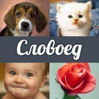 Ответы на Словоед ВКонтакте